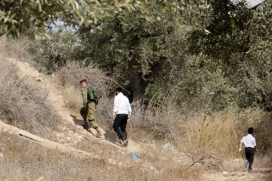 Un colono es acompañado por un soldado mientras atraviesa una finca de olivos de una familia palestina en H2 (A. Z.)